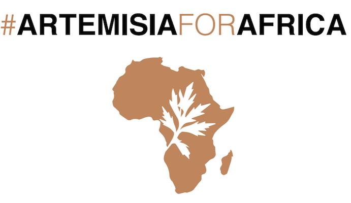 Campagne #ArtemisiaForAfrica